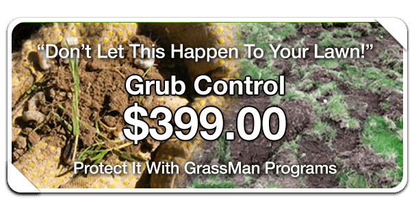 protect it with grassman lawn care